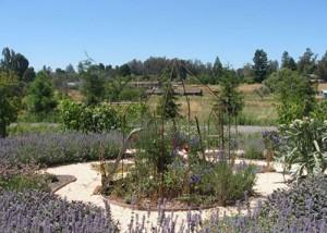 big14 custom landscape design