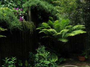 big33 landscaping design
